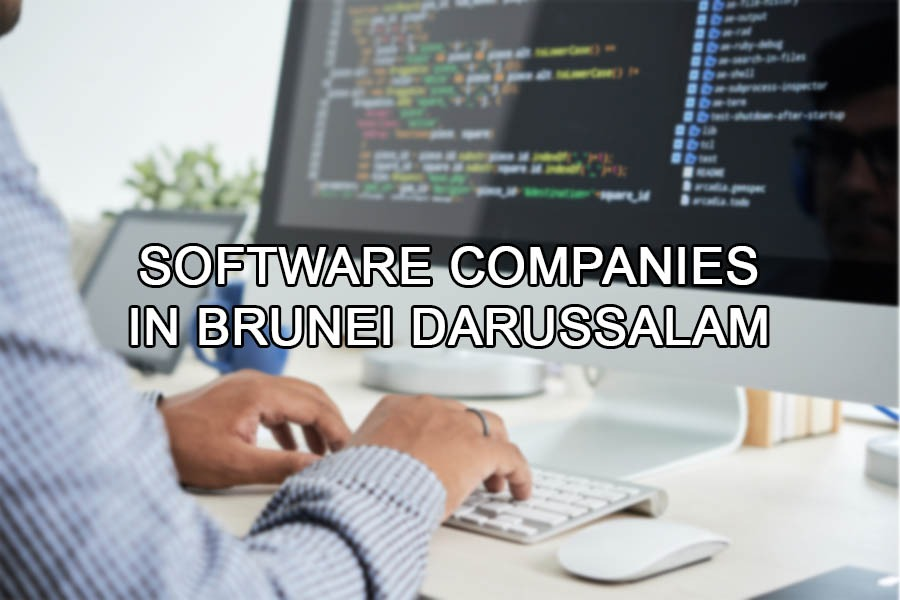 Top software companies in Brunei Darussalam