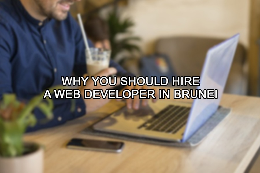 Why You Should Hire a Web Developer in Brunei